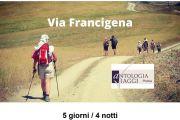 La Francigena - Cammina con noi da Lucca a Siena